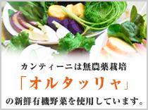 オルタッリャ 野菜畑